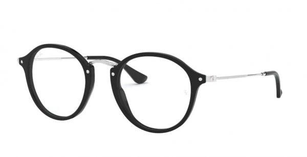 ray-ban glasses plastic 2447V black