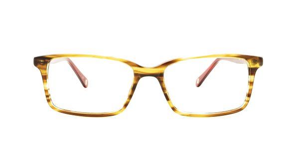 Ted Baker Tortoiseshell Acetate Glasses Luca 8118