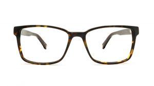 Ted Baker Tortoiseshell Acetate Glasses Abbott 8188