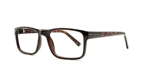 Matrix Tortoiseshell Acetate Glasses 827